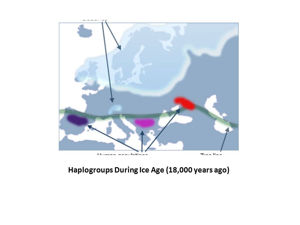 Haplogroups During Ice Age (18,000 years ago)