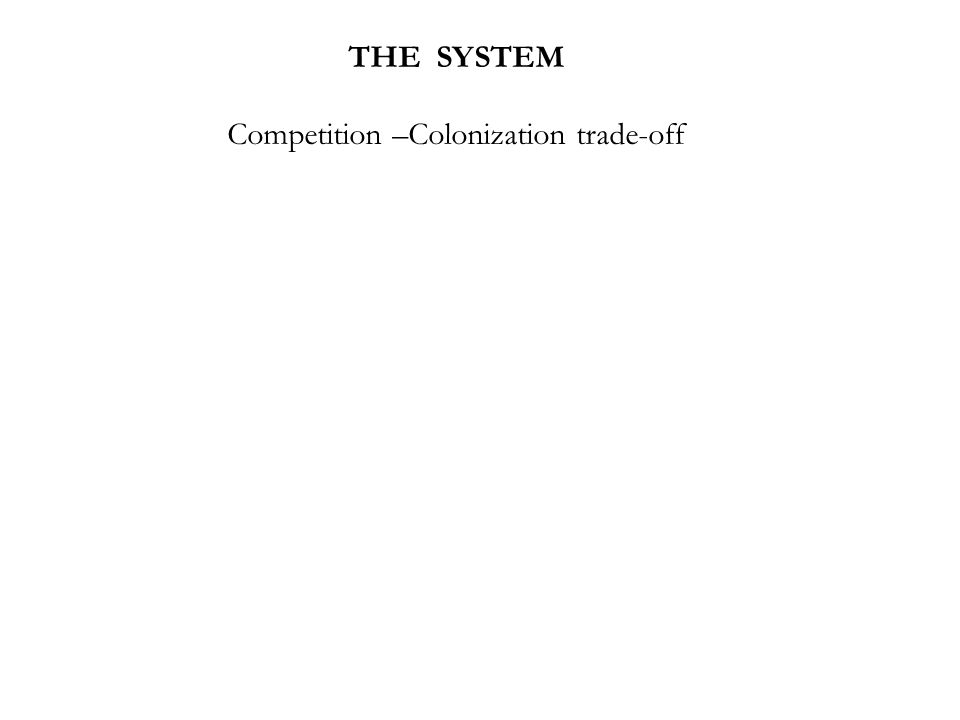 THE SYSTEM Competition –Colonization trade-off