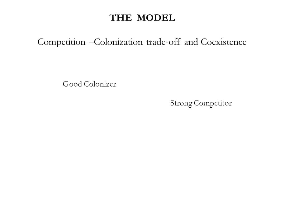 THE MODEL Competition –Colonization trade-off and Coexistence Strong Competitor Good Colonizer