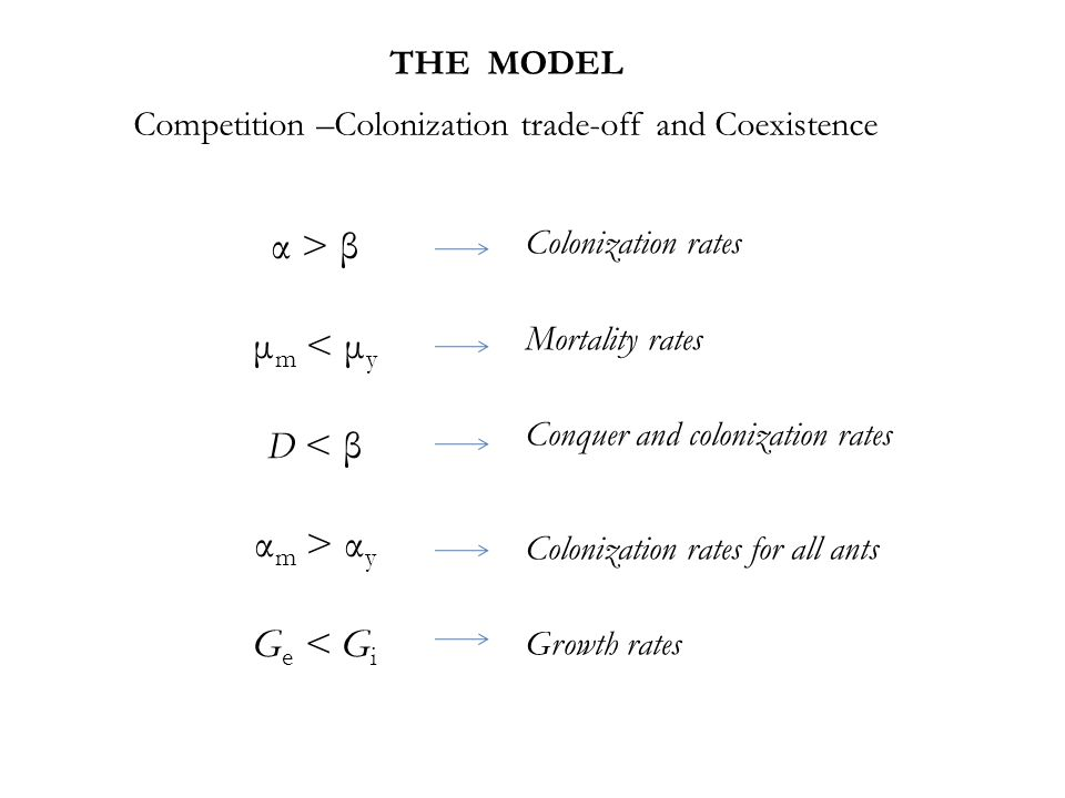 α > β μ m < μ y D < β α m > α y G e < G i THE MODEL Competition –Colonization trade-off and Coexistence Colonization rates Mortality rates Conquer and colonization rates Colonization rates for all ants Growth rates