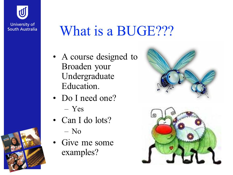 What is a BUGE??? A course designed to Broaden your Undergraduate Education. Do I need one? –Yes Can I do lots? –No Give me some examples?