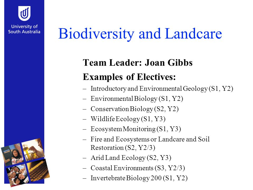 Biodiversity and Landcare Team Leader: Joan Gibbs Examples of Electives: –Introductory and Environmental Geology (S1, Y2) –Environmental Biology (S1,