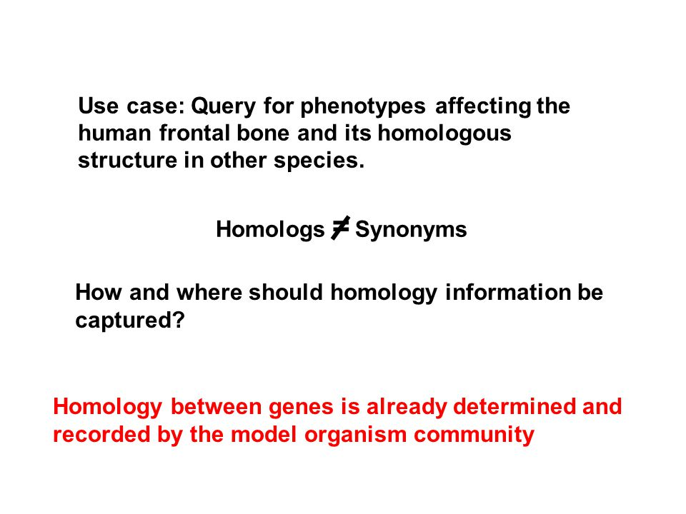 How and where should homology information be captured? Homology between genes is already determined and recorded by the model organism community Use c