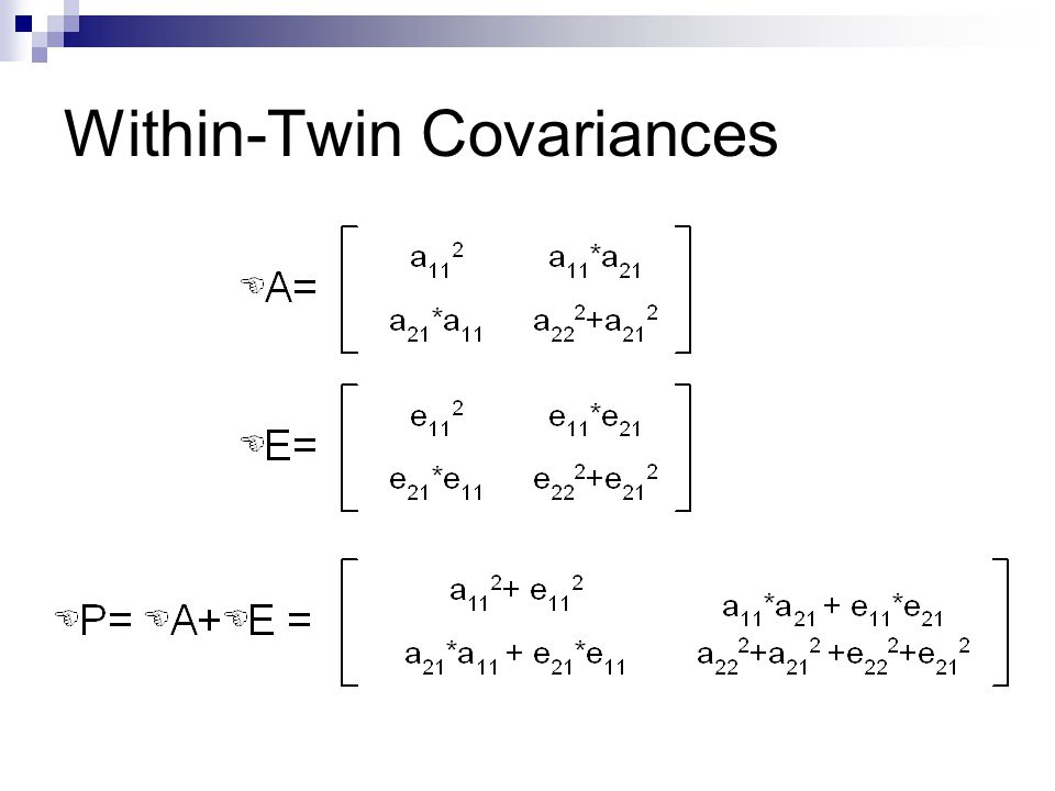 Within-Twin Covariances