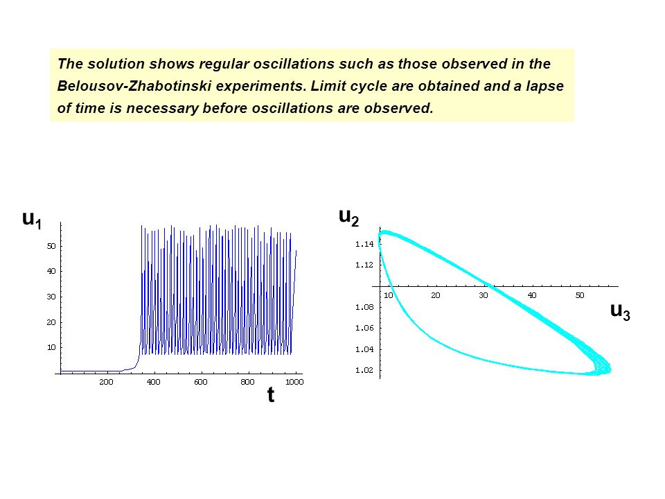 The solution shows regular oscillations such as those observed in the Belousov-Zhabotinski experiments.