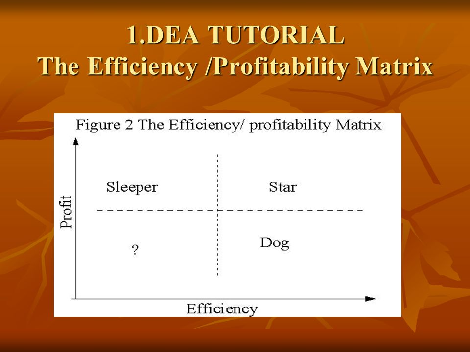 1.DEA TUTORIAL The Efficiency /Profitability Matrix