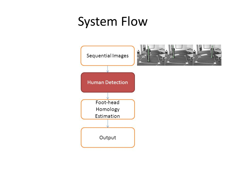 System Flow Sequential Images Human Detection Foot-head Homology Estimation Output