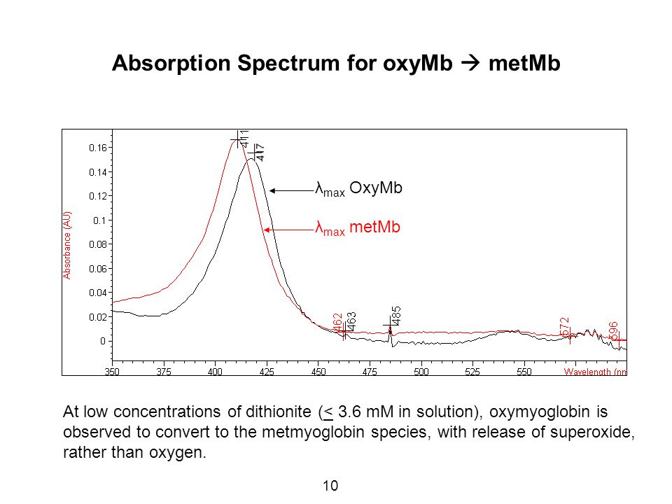 10 Absorption Spectrum for oxyMb  metMb 543 λ max OxyMb λ max metMb At low concentrations of dithionite (< 3.6 mM in solution), oxymyoglobin is observed to convert to the metmyoglobin species, with release of superoxide, rather than oxygen.
