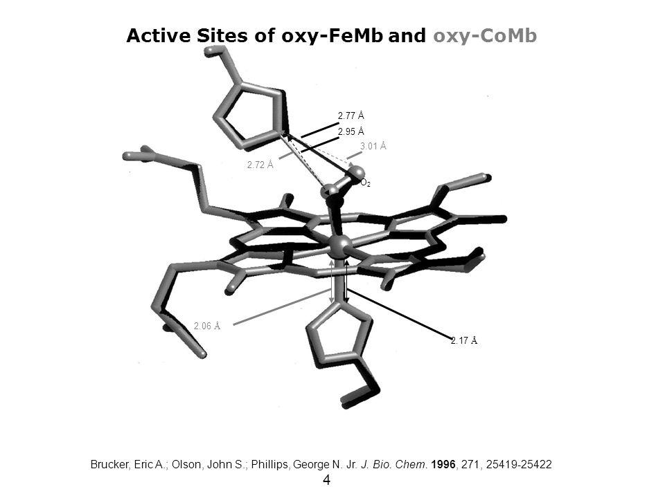 4 Active Sites of oxy-FeMb and oxy-CoMb O2O2 2.17 Å 2.06 Å 2.77 Å 3.01 Å 2.95 Å 2.72 Å Brucker, Eric A.; Olson, John S.; Phillips, George N. Jr. J. Bi