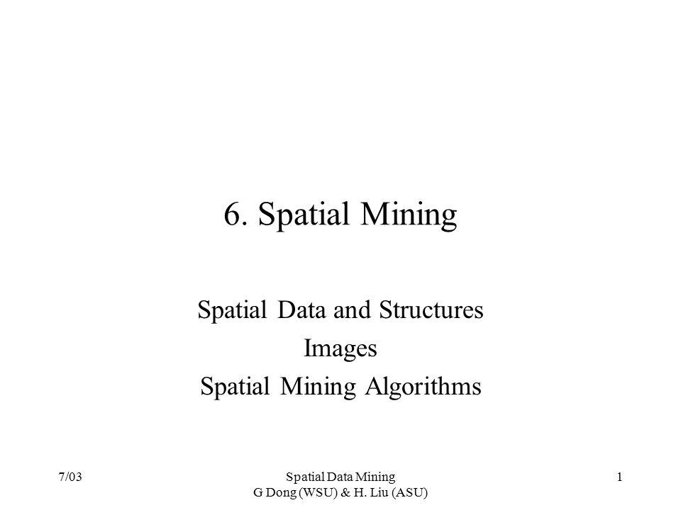 7/03Spatial Data Mining G Dong (WSU) & H. Liu (ASU) 1 6.