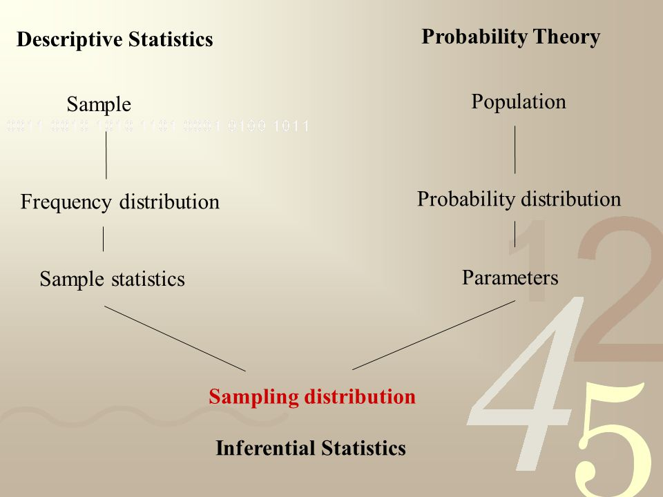 Sample Population Frequency distribution Probability distribution Descriptive Statistics Probability Theory Sample statistics Parameters Sampling distribution Inferential Statistics