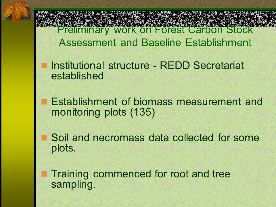 Preliminary work on Forest Carbon Stock Assessment and Baseline Establishment Institutional structure - REDD Secretariat established Establishment of biomass measurement and monitoring plots (135) Soil and necromass data collected for some plots.