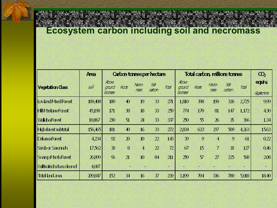 Ecosystem carbon including soil and necromass
