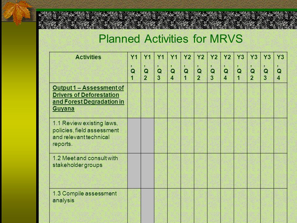 Planned Activities for MRVS ActivitiesY1, Q 1 Y1, Q 2 Y1, Q 3 Y1, Q 4 Y2, Q 1 Y2, Q 2 Y2, Q 3 Y2, Q 4 Y3, Q 1 Y3, Q 2 Y3, Q 3 Y3, Q 4 Output 1 – Assessment of Drivers of Deforestation and Forest Degradation in Guyana 1.1 Review existing laws, policies, field assessment and relevant technical reports.