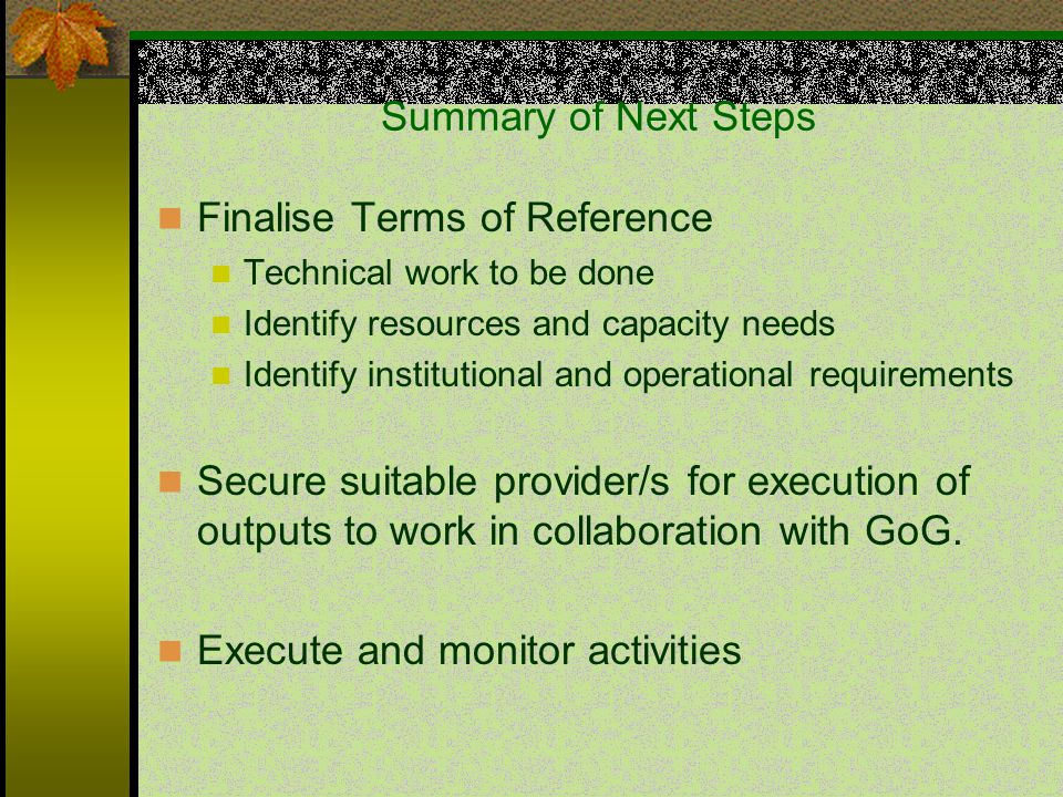 Summary of Next Steps Finalise Terms of Reference Technical work to be done Identify resources and capacity needs Identify institutional and operational requirements Secure suitable provider/s for execution of outputs to work in collaboration with GoG.