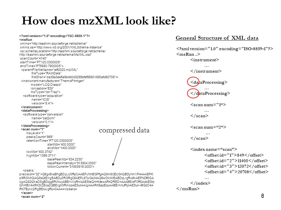 8 How does mzXML look like.