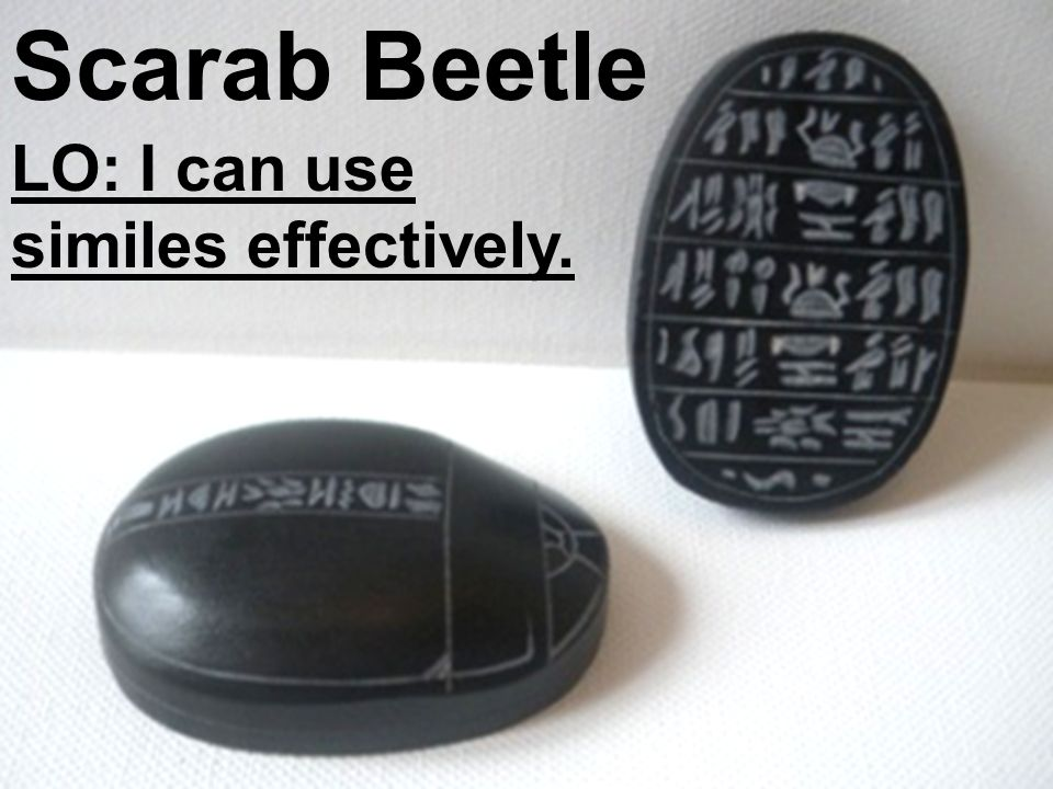 Scarab Beetle LO: I can use similes effectively.