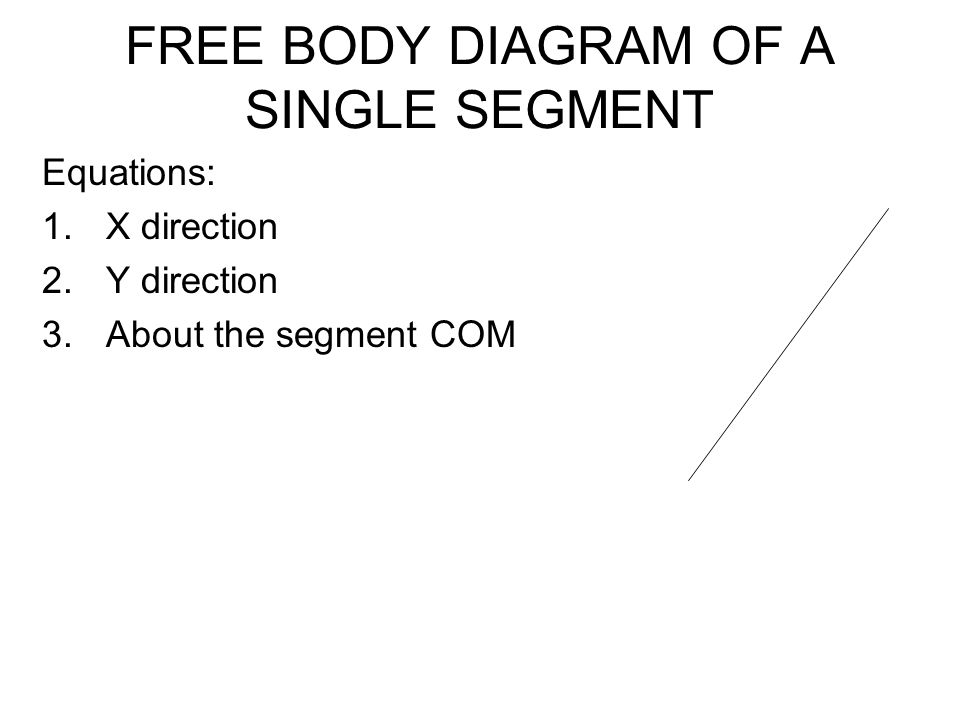 FREE BODY DIAGRAM OF A SINGLE SEGMENT Equations: 1.X direction 2.Y direction 3.About the segment COM