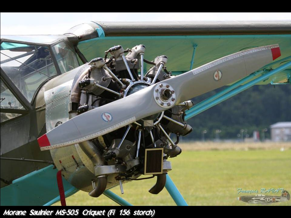 Morane Saulnier MS-505 Criquet (Fi 156 storch)