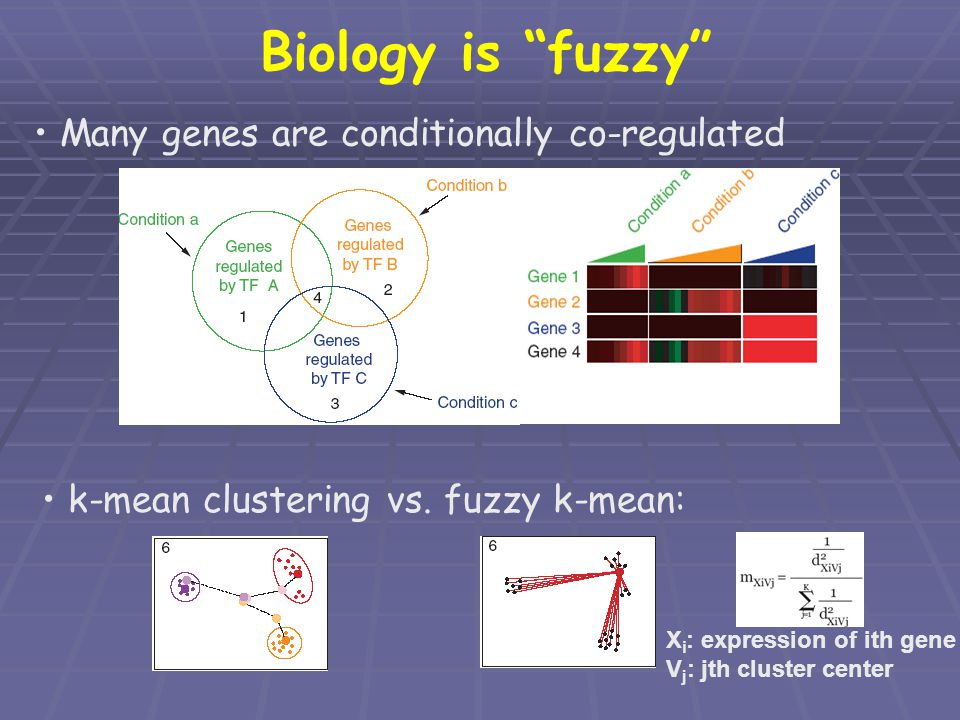 "Biology is ""fuzzy"" Many genes are conditionally co-regulated k-mean clustering vs. fuzzy k-mean: X i : expression of ith gene V j : jth cluster center"