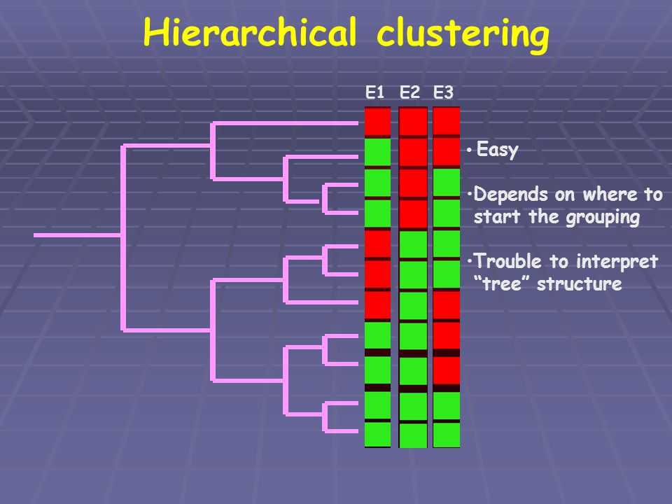 Hierarchical clustering E1E2E3 Easy Depends on where to start the grouping Trouble to interpret tree structure