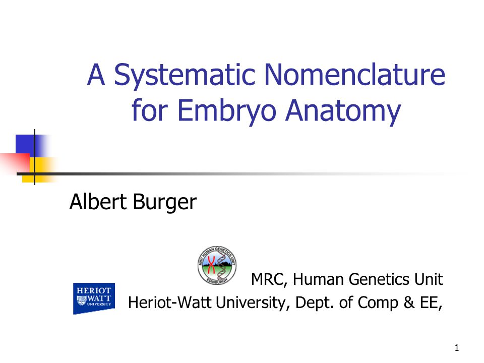 1 A Systematic Nomenclature for Embryo Anatomy MRC, Human Genetics Unit Heriot-Watt University, Dept.