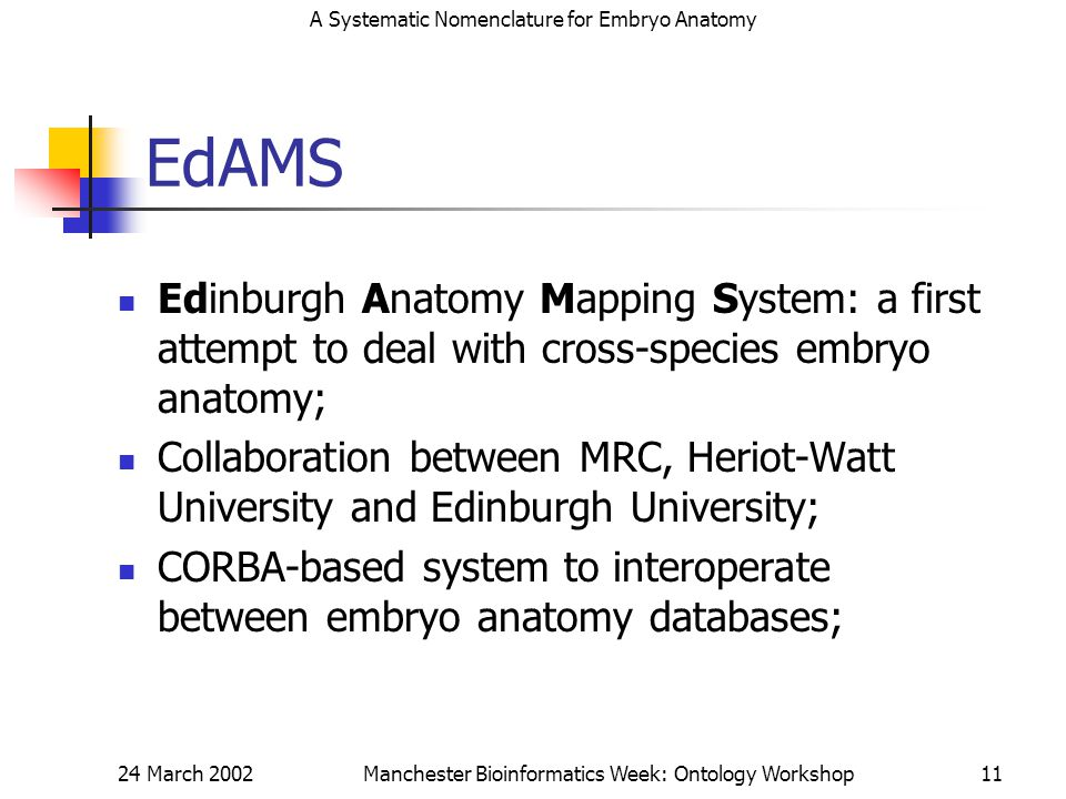 A Systematic Nomenclature for Embryo Anatomy 24 March 2002Manchester Bioinformatics Week: Ontology Workshop11 EdAMS Edinburgh Anatomy Mapping System: a first attempt to deal with cross-species embryo anatomy; Collaboration between MRC, Heriot-Watt University and Edinburgh University; CORBA-based system to interoperate between embryo anatomy databases;