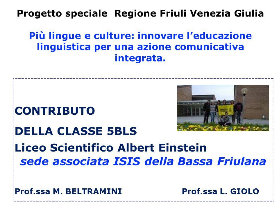 Progetto speciale Regione Friuli Venezia Giulia Più lingue e culture: innovare l'educazione linguistica per una azione comunicativa integrata.