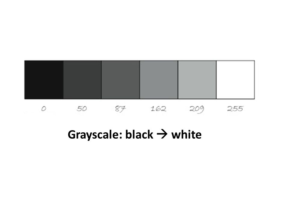 Grayscale: black  white