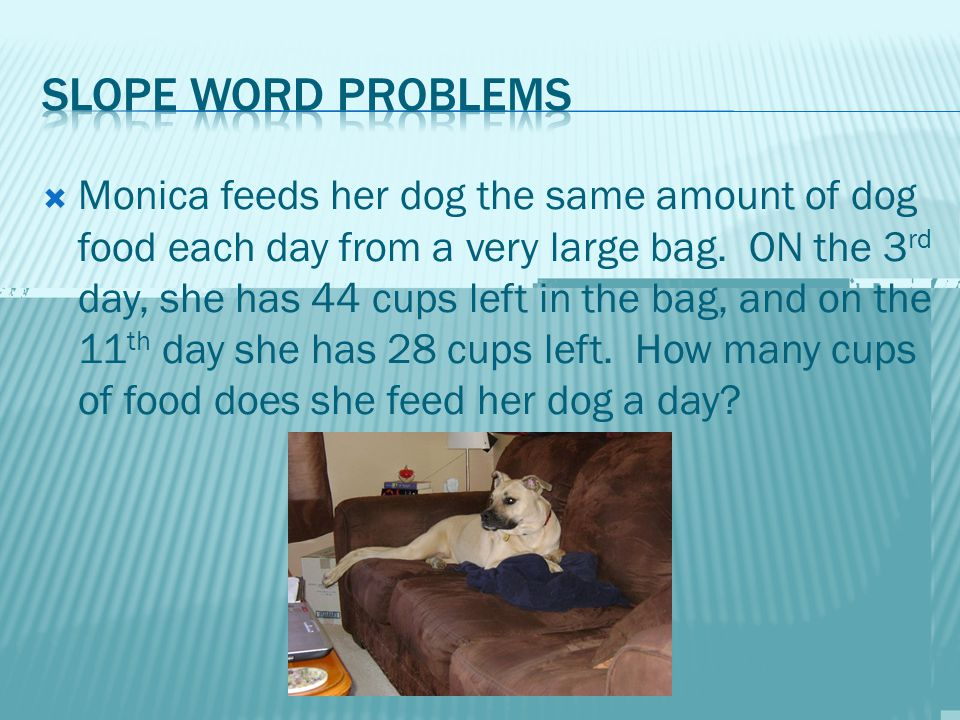  Monica feeds her dog the same amount of dog food each day from a very large bag.