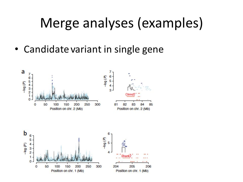 Merge analyses (examples) Candidate variant in single gene