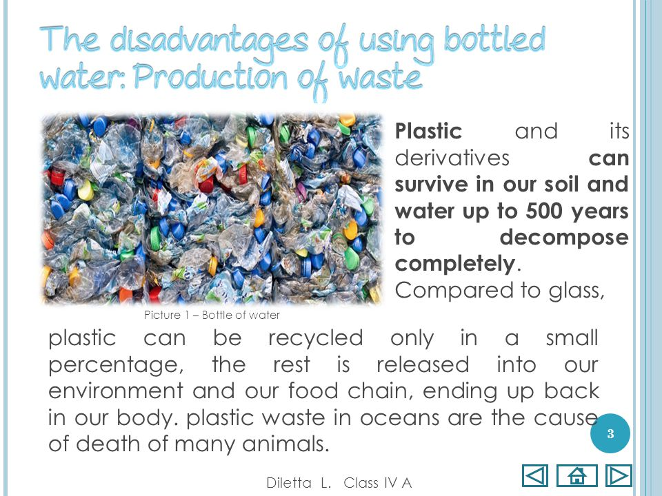 Plastic and its derivatives can survive in our soil and water up to 500 years to decompose completely. Compared to glass, Diletta L. Class IV A 3 plas