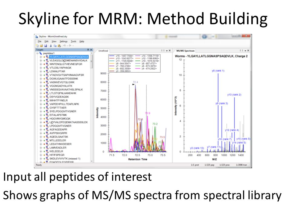 Skyline for MRM: Method Building Input all peptides of interest Shows graphs of MS/MS spectra from spectral library