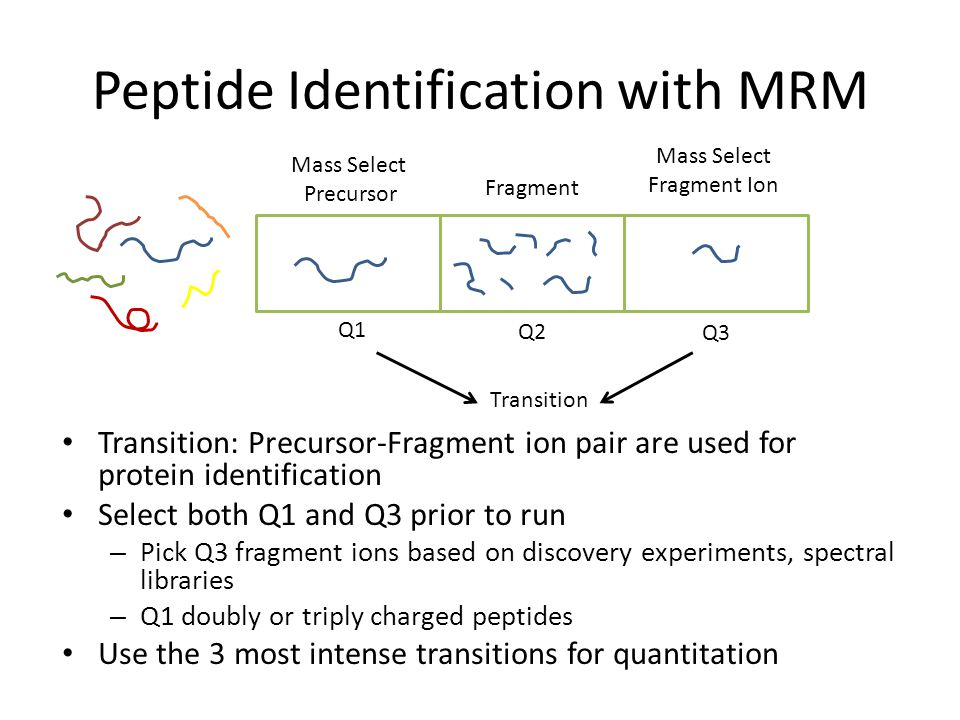 Peptide Identification with MRM Transition: Precursor-Fragment ion pair are used for protein identification Select both Q1 and Q3 prior to run – Pick