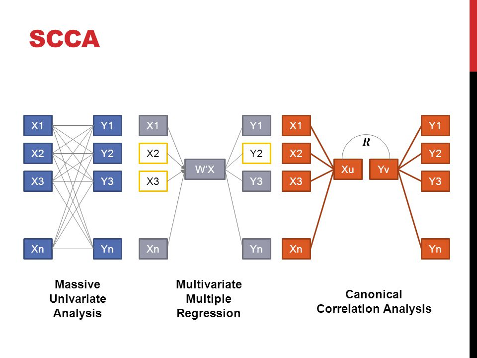 X1 X2 X3 Xn Y1 Y2 Y3 Yn X1 X2 X3 Xn Y1 Y2 Y3 W'X Yn X1 X2 X3 Xn Y1 Y2 Y3 Xu Yn Yv Massive Univariate Analysis Multivariate Multiple Regression Canonical Correlation Analysis SCCA