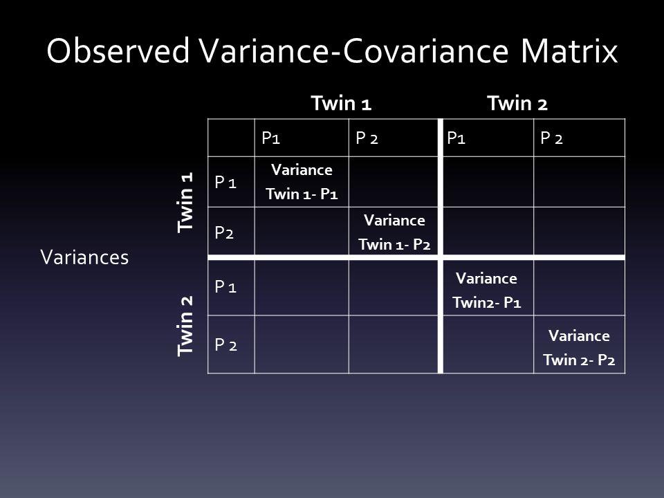Observed Variance-Covariance Matrix P1P 2P1P 2 P 1 Variance Twin 1- P1 P2 Variance Twin 1- P2 P 1 Variance Twin2- P1 P 2 Variance Twin 2- P2 Twin 1Twin 2 Twin 1 Twin 2 Variances