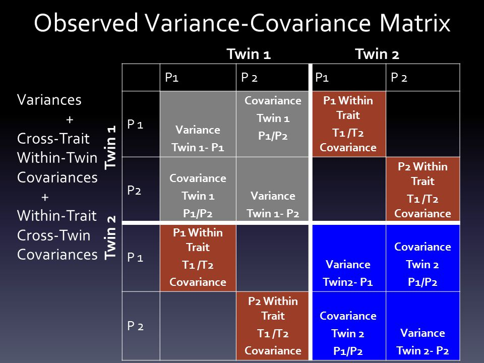 Observed Variance-Covariance Matrix P1P 2P1P 2 P 1 Variance Twin 1- P1 Covariance Twin 1 P1/P2 P1 Within Trait T1 /T2 Covariance P2 Covariance Twin 1 P1/P2 Variance Twin 1- P2 P2 Within Trait T1 /T2 Covariance P 1 P1 Within Trait T1 /T2 Covariance Variance Twin2- P1 Covariance Twin 2 P1/P2 P 2 P2 Within Trait T1 /T2 Covariance Twin 2 P1/P2 Variance Twin 2- P2 Twin 1Twin 2 Twin 1 Twin 2 Variances + Cross-Trait Within-Twin Covariances + Within-Trait Cross-Twin Covariances