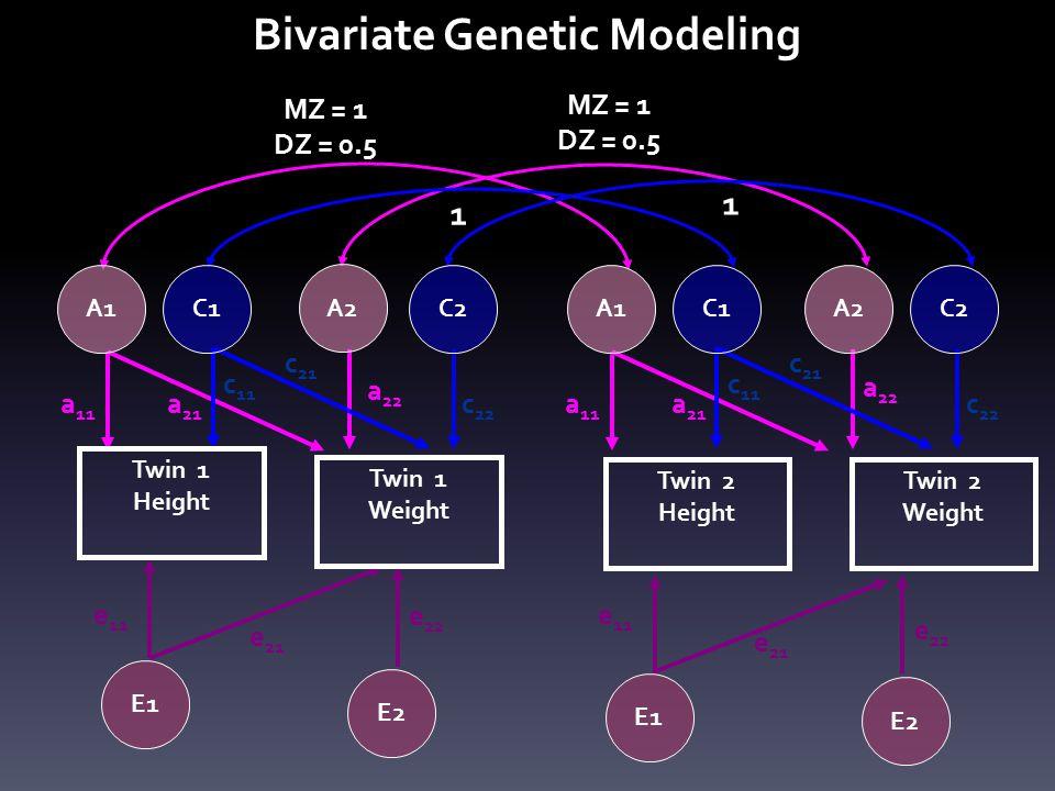 a 11 a 21 c 11 c 22 c 21 e 11 e 21 e 22 a 11 a 22 a 21 c 11 c 22 c 21 e 11 e 21 e 22 MZ = 1 DZ = 0.5 MZ = 1 DZ = 0.5 1 1 C1C2C1C2 Twin 1 Height Twin 1 Weight Twin 2 Height Twin 2 Weight E1 E2 E1 E2 a 22 Bivariate Genetic Modeling A1 A2 A1A2
