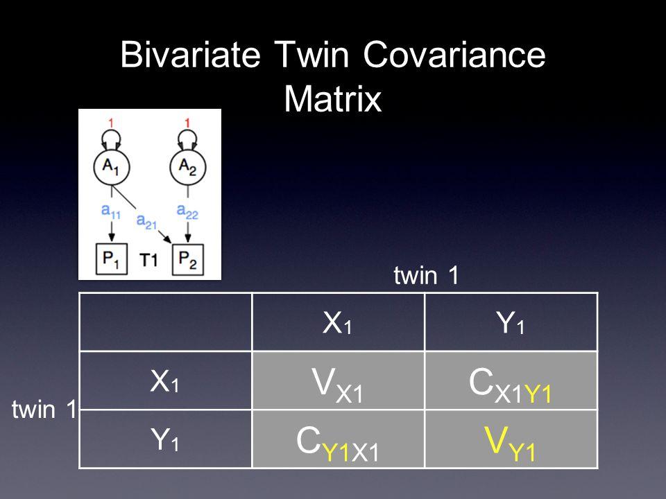Bivariate Twin Covariance Matrix X1X1 Y1Y1 X1X1 V X1 C X1Y1 Y1Y1 C Y1X1 V Y1 twin 1