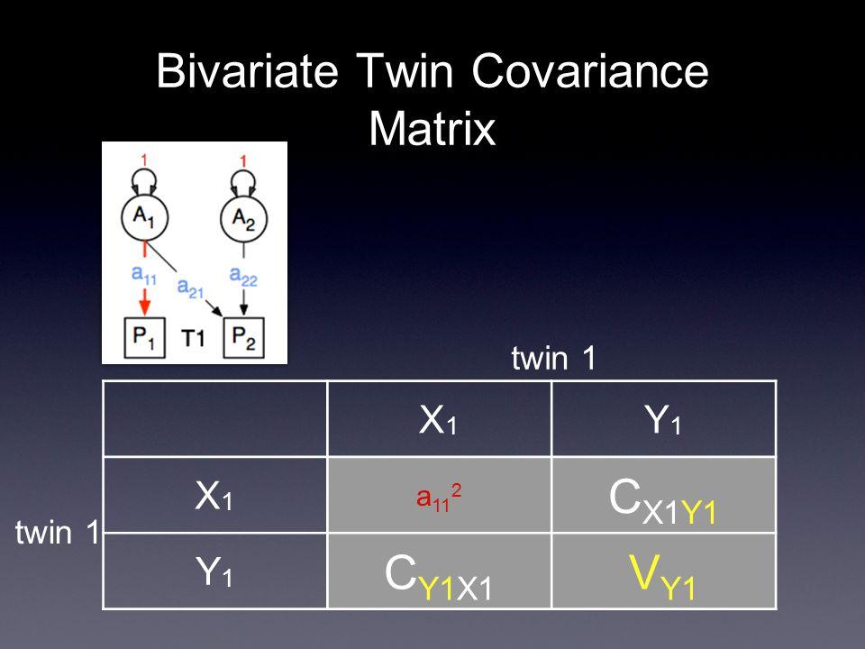 Bivariate Twin Covariance Matrix X1X1 Y1Y1 X1X1 a 11 2 C X1Y1 Y1Y1 C Y1X1 V Y1 twin 1