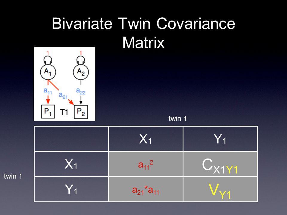 Bivariate Twin Covariance Matrix X1X1 Y1Y1 X1X1 a 11 2 C X1Y1 Y1Y1 a 21 *a 11 V Y1 twin 1