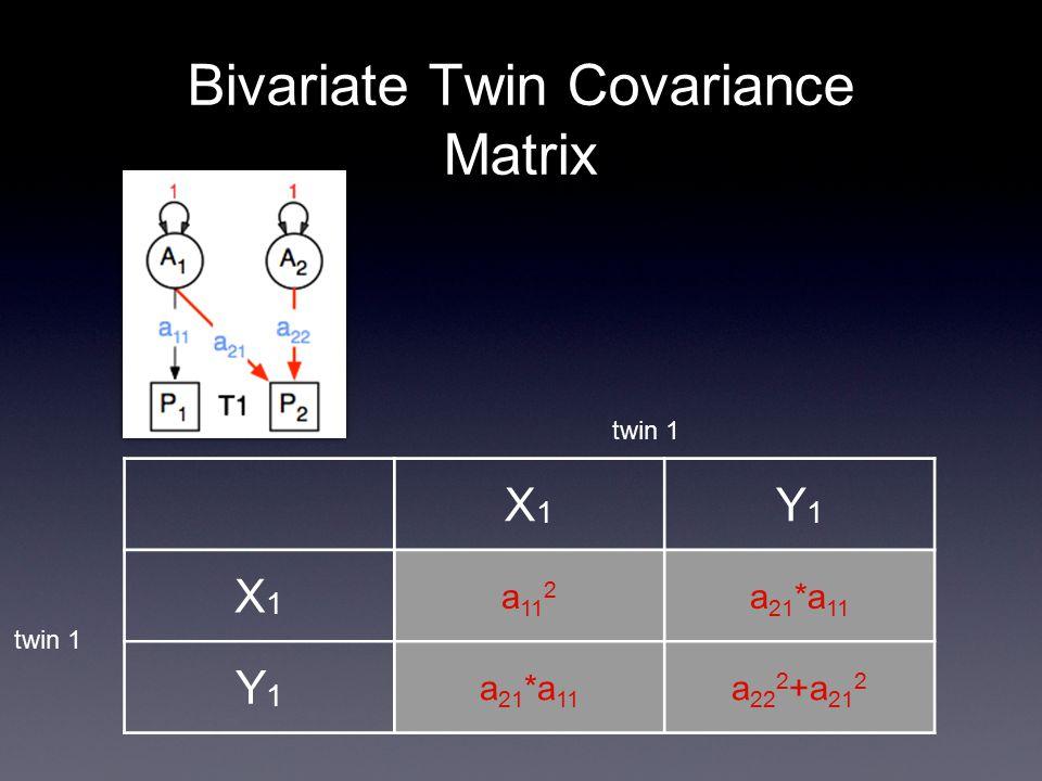 Bivariate Twin Covariance Matrix X1X1 Y1Y1 X1X1 a 11 2 a 21 *a 11 Y1Y1 a 22 2 +a 21 2 twin 1