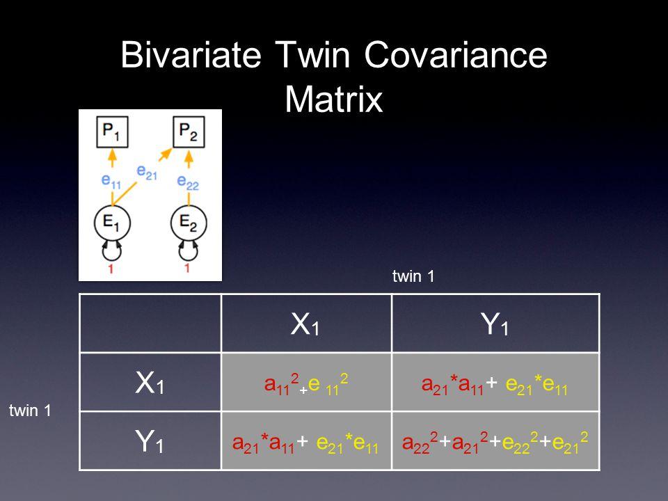 Bivariate Twin Covariance Matrix X1X1 Y1Y1 X1X1 a 11 2 + e 11 2 a 21 *a 11 + e 21 *e 11 Y1Y1 a 22 2 +a 21 2 +e 22 2 +e 21 2 twin 1