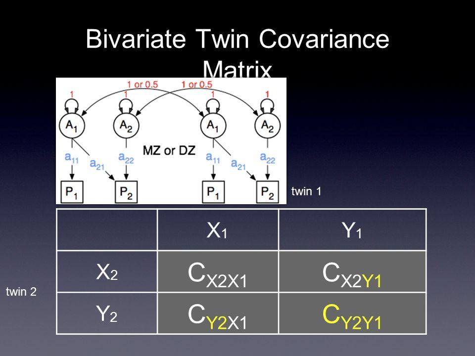 Bivariate Twin Covariance Matrix X1X1 Y1Y1 X2X2 C X2X1 C X2Y1 Y2Y2 C Y2X1 C Y2Y1 twin 1 twin 2