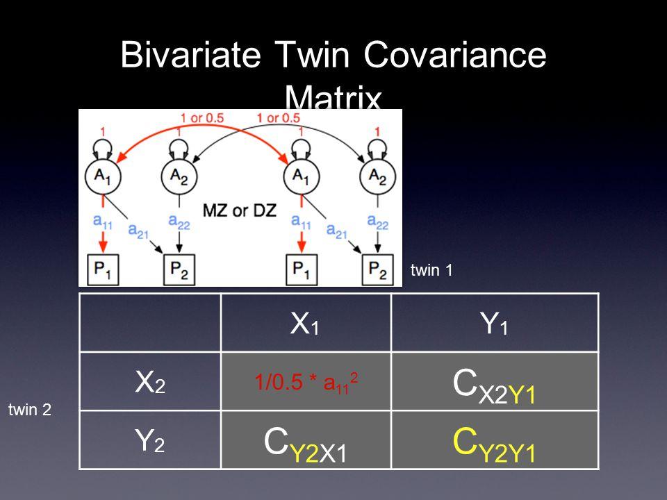 Bivariate Twin Covariance Matrix X1X1 Y1Y1 X2X2 1/0.5 * a 11 2 C X2Y1 Y2Y2 C Y2X1 C Y2Y1 twin 1 twin 2