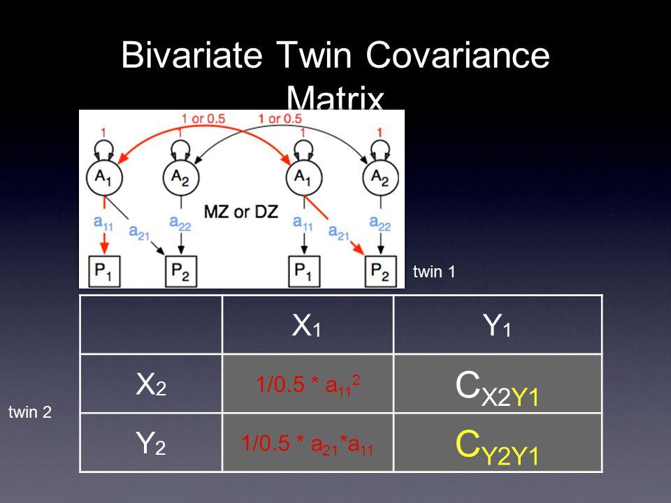 Bivariate Twin Covariance Matrix X1X1 Y1Y1 X2X2 1/0.5 * a 11 2 C X2Y1 Y2Y2 1/0.5 * a 21 *a 11 C Y2Y1 twin 2 twin 1