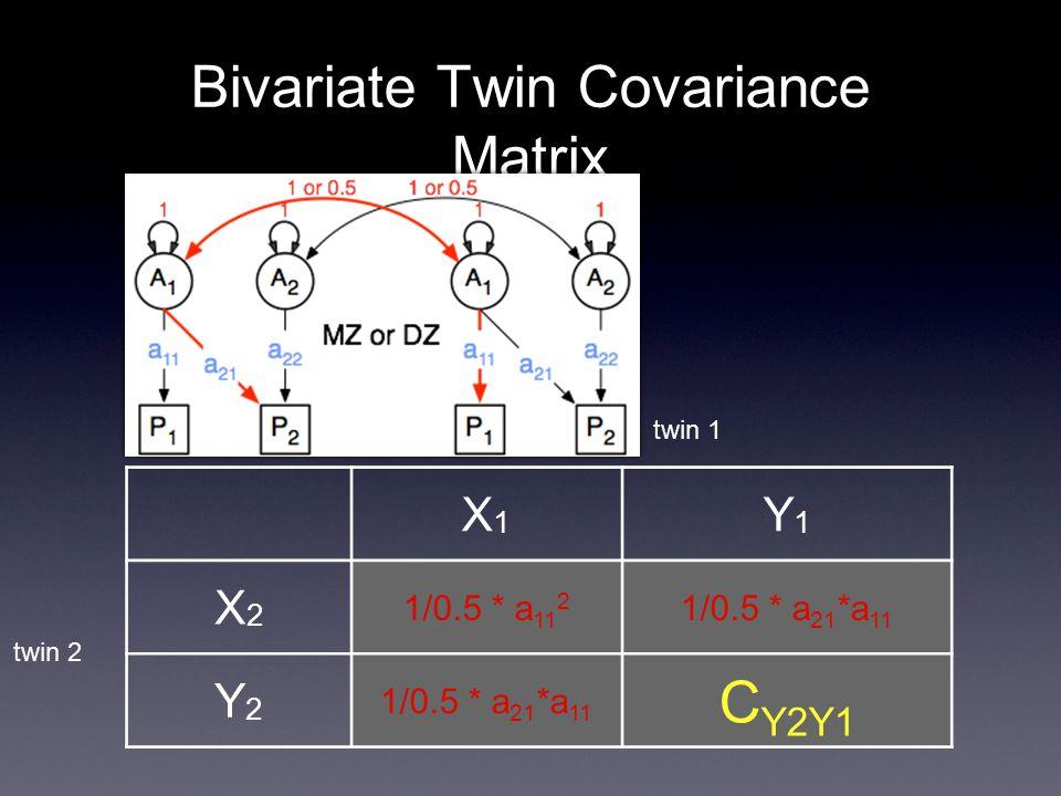 Bivariate Twin Covariance Matrix X1X1 Y1Y1 X2X2 1/0.5 * a 11 2 1/0.5 * a 21 *a 11 Y2Y2 C Y2Y1 twin 2 twin 1