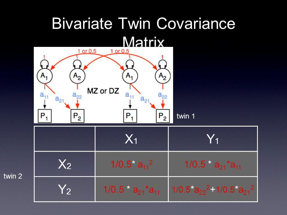 Bivariate Twin Covariance Matrix X1X1 Y1Y1 X2X2 1/0.5* a 11 2 1/0.5 * a 21 *a 11 Y2Y2 1/0.5 *a 22 2 + 1/0.5 *a 21 2 twin 2 twin 1