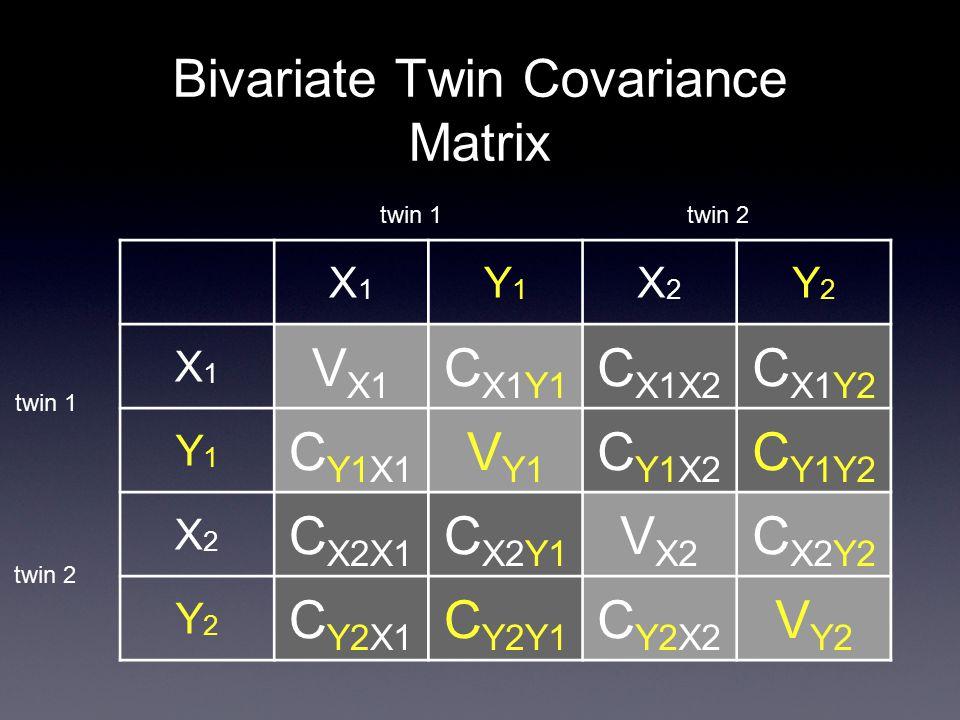Bivariate Twin Covariance Matrix X1X1 Y1Y1 X2X2 Y2Y2 X1X1 V X1 C X1Y1 C X1X2 C X1Y2 Y1Y1 C Y1X1 V Y1 C Y1X2 C Y1Y2 X2X2 C X2X1 C X2Y1 V X2 C X2Y2 Y2Y2 C Y2X1 C Y2Y1 C Y2X2 V Y2 twin 1 twin 2