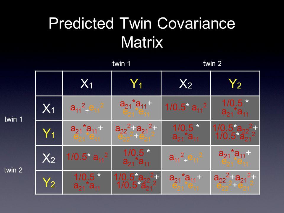 Predicted Twin Covariance Matrix X1X1 Y1Y1 X2X2 Y2Y2 X1X1 a 11 2 + e 11 2 a 21 *a 11 + e 21 *e 11 1/0.5* a 11 2 1/0.5 * a 21 *a 11 Y1Y1 a 21 *a 11 + e 21 *e 11 a 22 2 +a 21 2 + e 22 2 +e 21 2 1/0.5 * a 21 *a 11 1/0.5*a 22 2 + 1/0.5*a 21 2 X2X2 1/0.5* a 11 2 1/0.5 * a 21 *a 11 a 11 2 + e 11 2 a 21 *a 11 + e 21 *e 11 Y2Y2 1/0.5 * a 21 *a 11 1/0.5*a 22 2 + 1/0.5*a 21 2 a 21 *a 11 + e 21 *e 11 a 22 2 +a 21 2 + e 22 2 +e 21 2 twin 1 twin 2